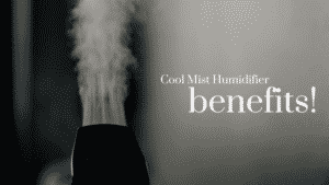 Cool Mist Humidifier Benefits For Your Health and Home!