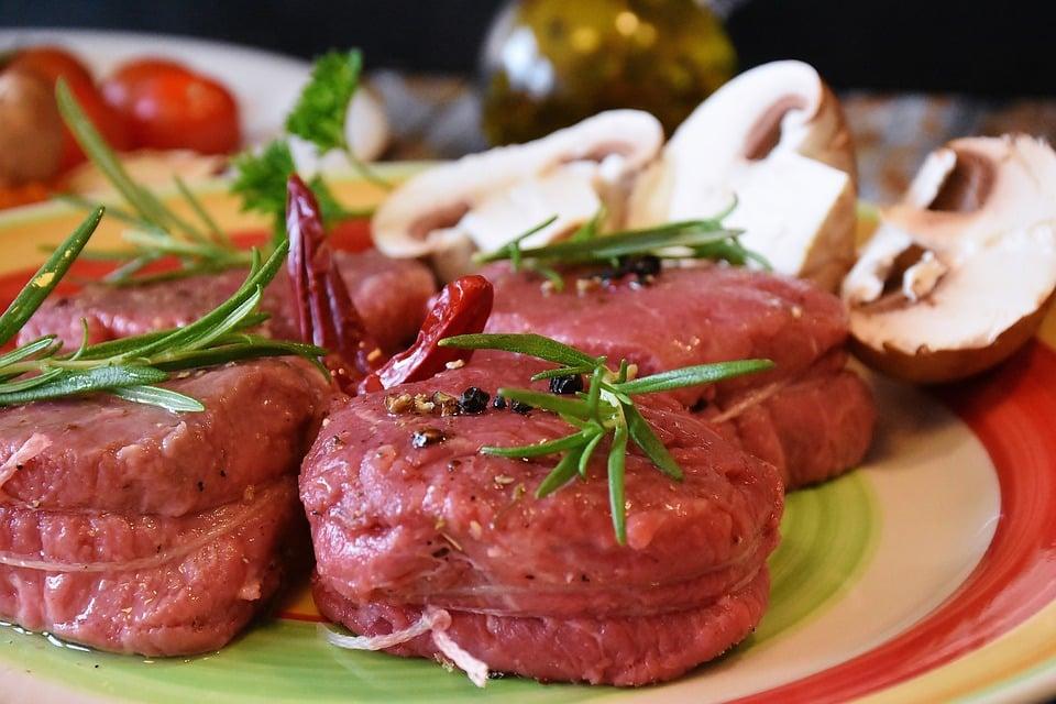 Carnivorous Diet Food List