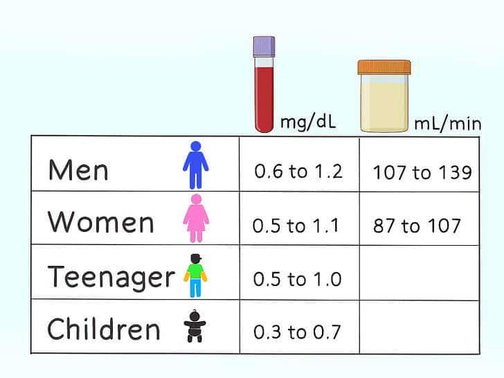 Creatinine levels chart